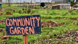 Katılımcı Kentli Kimliğinin Oluşumunda  Kamusal Ve Özel Açık Yeşil Alanların Rolü; Kent Bahçeleri