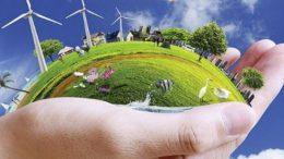 Derin Ekoloji / Ekomerkezcilik ve İnsan Merkezcilik Arasındaki Farklar